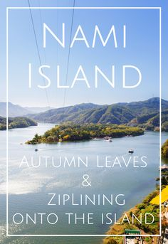 Nami Island Zipline Autumn Fall Leaves