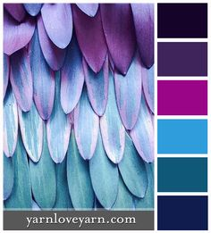 Purple Feathers Palette