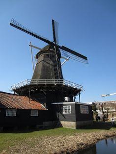 Houtzaagmolen de Ster te Utrecht, is het middelpunt van de Molenwerf de Ster, het enige compleet bewaard gebleven houtzaagmolenerf van Nederland. Molenerf de Ster bestaat uit de windmolen met zagerij, de molenaarswoning, twee knechtswoningen en drie houtdroog-loodsen. De top van de molen reikt tot 20 meter in de lucht. De wieken staan daar nog eens 9 meter boven.