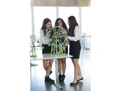 Amusement Park Set: London Eye & Merry-Go-Round | Engino - Play to Invent