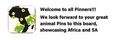Welcome from @www.wildafricalive.com