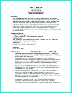 Database Developer Resume sql programmer resumedatabase developer resume sample template Database Developer Resume Here Can Be Used By Professionals To Prove Their Skills And Track Record
