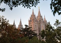 February: The Plan of Salvation Lds Youth, Plan Of Salvation, Salt Lake Temple, Lds Church, Latter Day Saints, Sunday School, Young Women, How To Plan, Lds Org