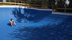 На Русановских садах обустроили «бассейн» для скейтеров   «Наш Киев» - новости Киева, афиша Киева, погода Киева