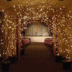 put a black cloth behind it to hide the door and do it more simple by tacking the branches and lights on the cloth