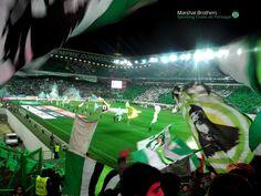 #Alvalade #sporting #SportingClubePortugal #sportingfans