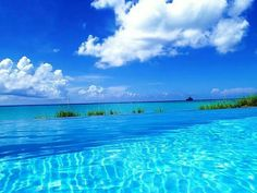 Florida Keys island life Contact me for more info! NO FEES for my services! Krystal Ensing Travel Agent Castles & Dreams Travel (No Fees) Authorized Disney Vacation Planner krystal@castlesanddreamstravel.com 1-800-571-6313 Ext. 16 www.castlesanddreamstravel.com  www.facebook.com/kmakesmemories