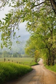 Roads, Trails and Paths *🇺🇸 Country road (near Memphis, Tennessee) (from Getty) cr. Beautiful Roads, Beautiful Landscapes, Beautiful Places, Country Life, Country Roads, Country Walk, Modern Country, Landscape Photography, Nature Photography