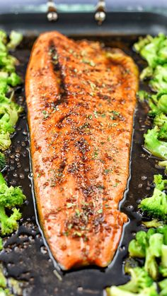 By blending the slig By blending the slightly tart yet sweet flavors from the sauce with garlic you can turn a good piece of Steelhead Trout into something great. You can also mix the broccoli in the sauce to give it a boost as well. Steelhead Trout Recipe Baked, Baked Trout, Rainbow Trout Recipe Baked, Recipe For Pan Fried Trout, Fish Recipes For The Grill, Best Trout Recipe, Baked Fish, Fish Dishes, Seafood Dishes