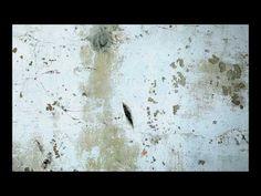 THE META SELFIE (rough cut) | Herman van Bon Photography