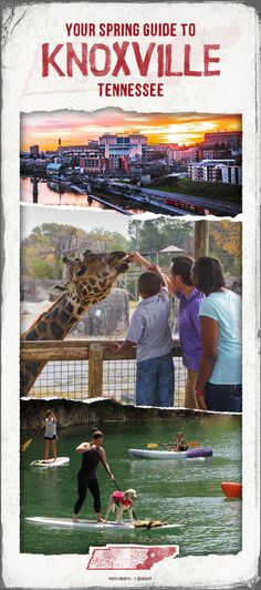 Create unforgettable memories when you plan a spring trip around some of Knoxville's biggest events. Top Places To Travel, I Want To Travel, Vacation Places, Vacation Destinations, Dream Vacations, Vacation Trips, Vacation Spots, Places To See, Greece Vacation