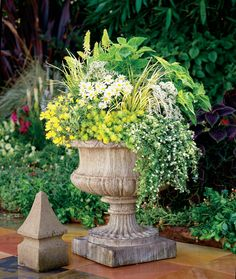 We call this combination 'Sanibel Island', and it is a great summer/fall combination for full sun settings.