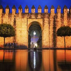 Cordoba / España Andalucia, Our World, Travel, Image, Instagram, Cordoba Spain, Countries, Europe, Viajes