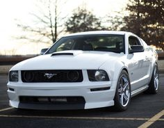 Clean, white Mustang. This is attractive to me