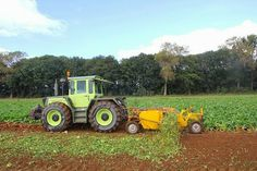 Classic Tractor, Agriculture, Mercedes Benz, Childhood, Track, Tractor, Good Job, Childhood Memories, Commercial Vehicle