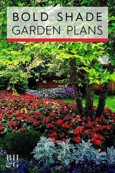 This Lush Shade Garden Is So Easy to Create - Enjoy beautiful color all spring and summer with this easy-to-grow shade garden plan. Ferns and hardy perennials create clean loops around the trunk of a tree. Perennials Fabric, Full Sun Perennials, Hardy Perennials, Landscaping Around Trees, Shade Landscaping, Garden Landscaping, Landscaping Ideas, Shade Garden Plants, Fall Plants