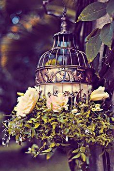 Marie Antoinette Bridal_Tamiz Photography_35