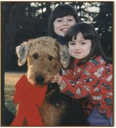 Airedales are great pets for children.