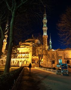 The Blue Mosque by alessandro giovanelli on 500px