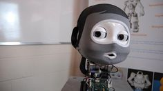 This iCub Robot Is Learning to Walk, Talk, and Grow