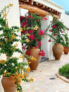 Cheap and simple DIY garden ideas that anyone can make 13 - Diygarden.live - Cheap and simple DIY garden ideas that anyone can make 13 - Cheap Landscaping Ideas, Small Backyard Landscaping, Patio Ideas, Backyard Ideas, Mulch Landscaping, Landscaping Borders, Desert Backyard, Florida Landscaping, Cozy Backyard