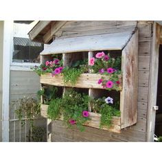 A plant holder hanging outside the coop!! Could make this out of recycled material like old wood, etc.