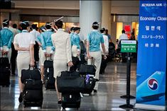 World stewardess Crews: Passengers like to capture behind the crew Korean Airlines, Airline Uniforms, Asian Babies, Cabin Crew, Flight Attendant, Korean Girl, Baby Strollers, History, World