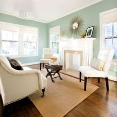 aqua smoke - Behr. Paint color. I like this for guest room