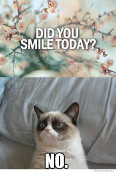 Did you smile today? No.