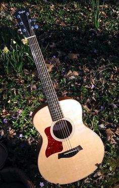 My new guitar- GS MINI Taylor