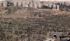 Jerusalem: Israel to expand settlement with 770…: The Israeli District Planning and Building Committee in Jerusalem has deposited a plan…