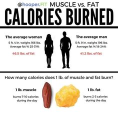 regram @hooper.fit MUSCLE vs FAT CALORIES BURNED . #TheMoreYouKnow  .  Let's just pause and take a moment to acknowledge that having body fat is an essential part of having a healthy body. . As addressed in the #infographic, fat burns calories. It also protects our organs and provides us with an opportunity to move throughout life comfortably. . That said, building additional muscle mass is also highly advantageous. Like fat, muscle also burns calories, increases our strength and provides an…