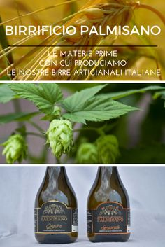 Pure Leaf Tea, Brewery, Pure Products, Drinks, Bottle, Food, Drinking, Beverages, Flask