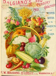 Early Rare Repro Art Vintage Garden Catalogs from Companies for Growing Vegetables, Flowers, Fruits and Blubs Approx. Posters Vintage, Images Vintage, Vintage Diy, Vintage Labels, Vintage Ephemera, Vintage Postcards, Vintage Gifts, Garden Catalogs, Seed Catalogs