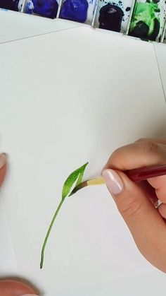 How to paint a simple watercolor leaf 🌿 – Aquarellmalerei – dibujo Watercolor Leaf, Watercolor Flowers Tutorial, Watercolor Video, Watercolour Tutorials, Watercolor Cards, Watercolor Animals, Watercolor Landscape, Tattoo Watercolor, Watercolor Background