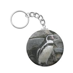 >>>The best place          Humboldt Penguin Close-up Photo Key Chain           Humboldt Penguin Close-up Photo Key Chain We have the best promotion for you and if you are interested in the related item or need more information reviews from the x customer who are own of them before please follo...Cleck link More >>> http://www.zazzle.com/humboldt_penguin_close_up_photo_key_chain-146953673174728110?rf=238627982471231924&zbar=1&tc=terrest