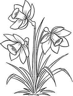 Many people believe that there is a magical formula for home decoration. You do things… Flower Coloring Pages, Colouring Pages, Coloring Books, Embroidery Flowers Pattern, Flower Patterns, Embroidery Designs, Flower Sketches, Drawing Sketches, Drawing Flowers