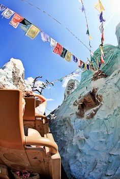 Expedition Everest - Animal Kingdom - This was our favorite ride in all of Disney World!