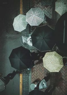 Ana Rosa / umbrellas