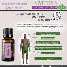 ¿Cómo afecta el #estrés tu cuerpo? Relájate con la mezcla de #aceites_esenciales #Serenity de #doTERRA