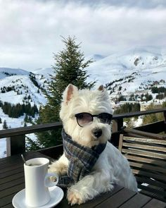 Look at this hipster enjoying his latte!