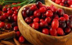 Os 8 Benefícios do Suco de Cranberry Branco Para Saúde