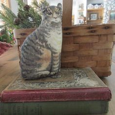 """Prim Quilt Cabinet Keeper! Antique c1892 Arnold Printworks Kitten Cat 6 1/2"""" #Country #handmade Kitten Cat, Cats And Kittens, Primitive Country, Country Decor, The Past, Asia, Decorating, Quilts, Cabinet"""