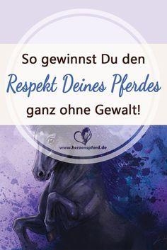 So gewinnst Du den Respekt Deines Pferdes - ganz ohne Gewalt!