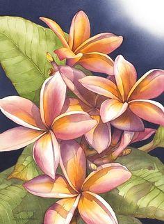 Barbara Groenteman - Work Zoom: Scent of the Tropics #4