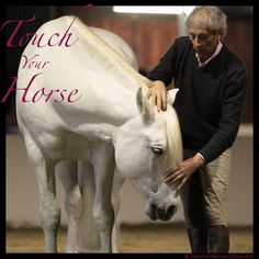 Touch Your Horse. Touch your horse to connect, to detect, to release, to reward, to assist to unfold, to remind, to facilitate, to bring peace or energy to make whole and to make well. Touch. This is a theme that comes back again and again in Manolo's work.