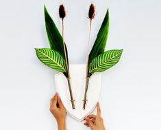 http://sosuperawesome.com/post/168738310506/wall-vases-by-eco-deer-on-etsy