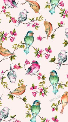 Картинка с тегом «wallpaper, bird, and background»