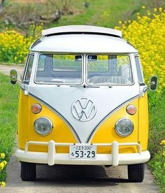 Klassische VW Vans - - My list of the best classic cars Volkswagen Bus, Volkswagen Transporter, Vw Camper, Vw T1, Wolkswagen Van, Van Vw, Vw Bugs, Kombi Trailer, Dream Cars