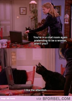 On the Internet, nobody knows you're a cat.